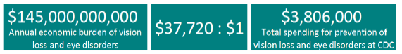 impact of vision problems and spending