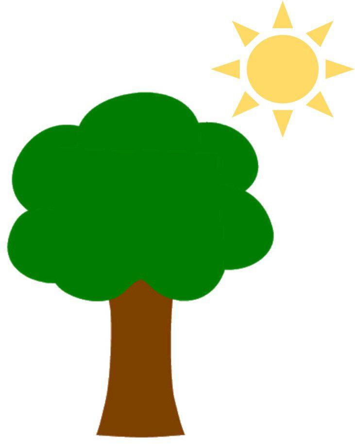 tree n sun